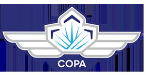 new-copa_wings-300